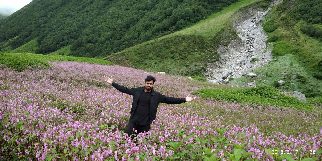 Photo of A place where everyone must go : trek to incredible valley of flowers Uttarakhand By Anil Dhayal