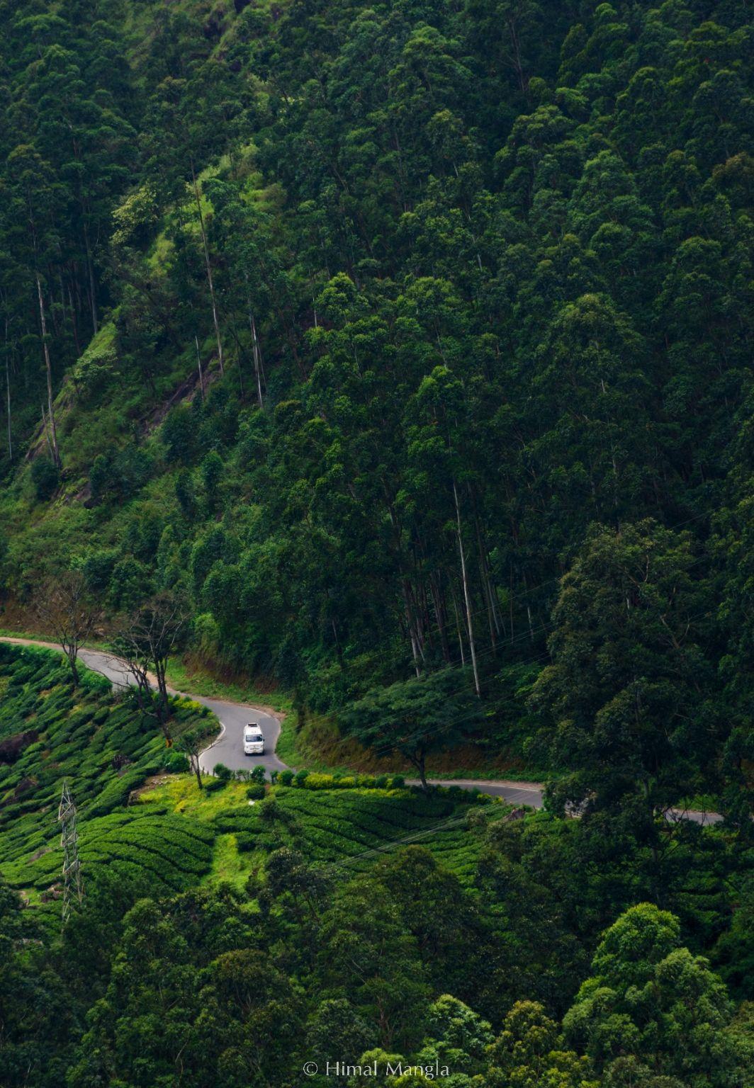 Photo of Munnar By Himal Mangla