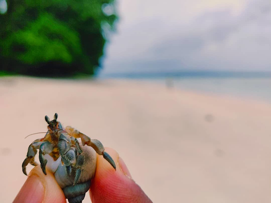 Photo of Havelock Island By Gyan Deepam