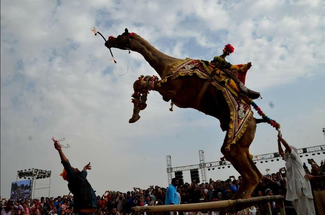 Photo of Bikaner By Udayveer singh