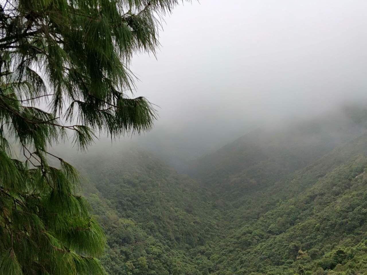 Photo of Meghalaya By Anindita Sarkar