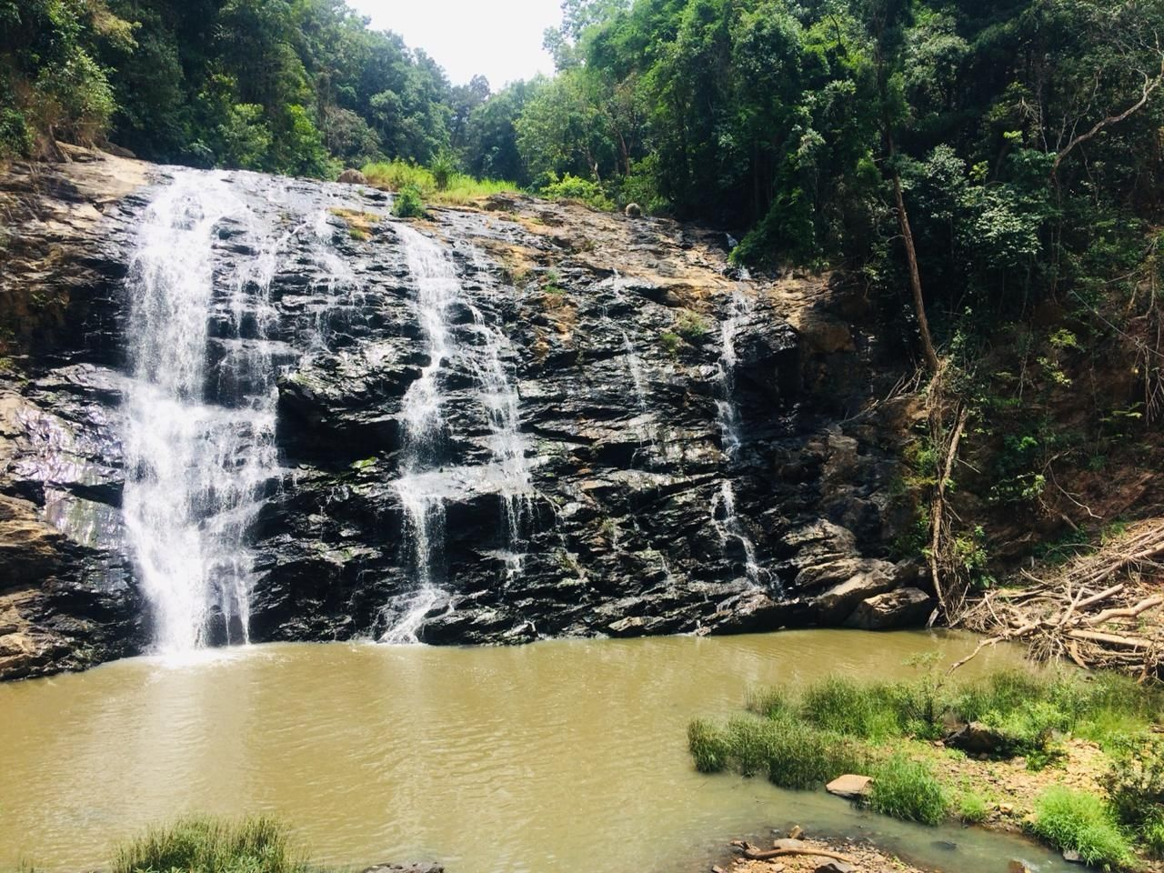 Photo of Coorg By Riya Jaiswal