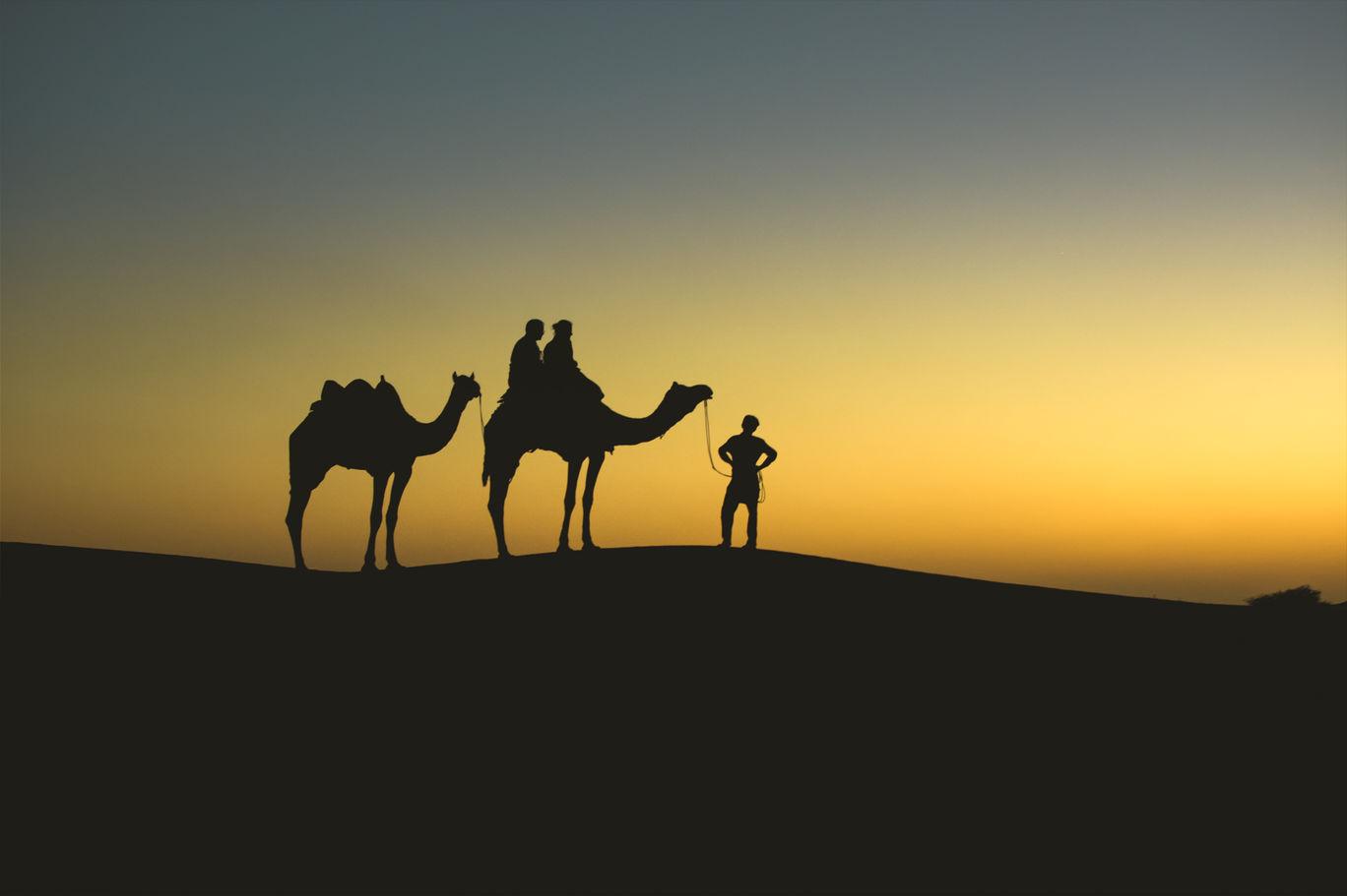 Photo of Sam Sand Dunes By Jay Gulgulia