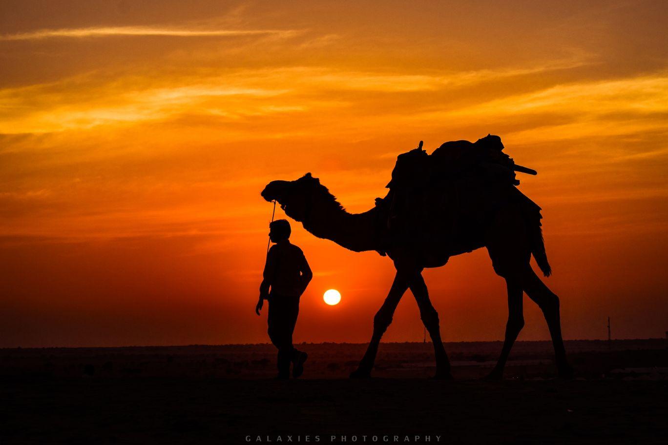 Photo of Thar Desert By Apoorv Shrivastava
