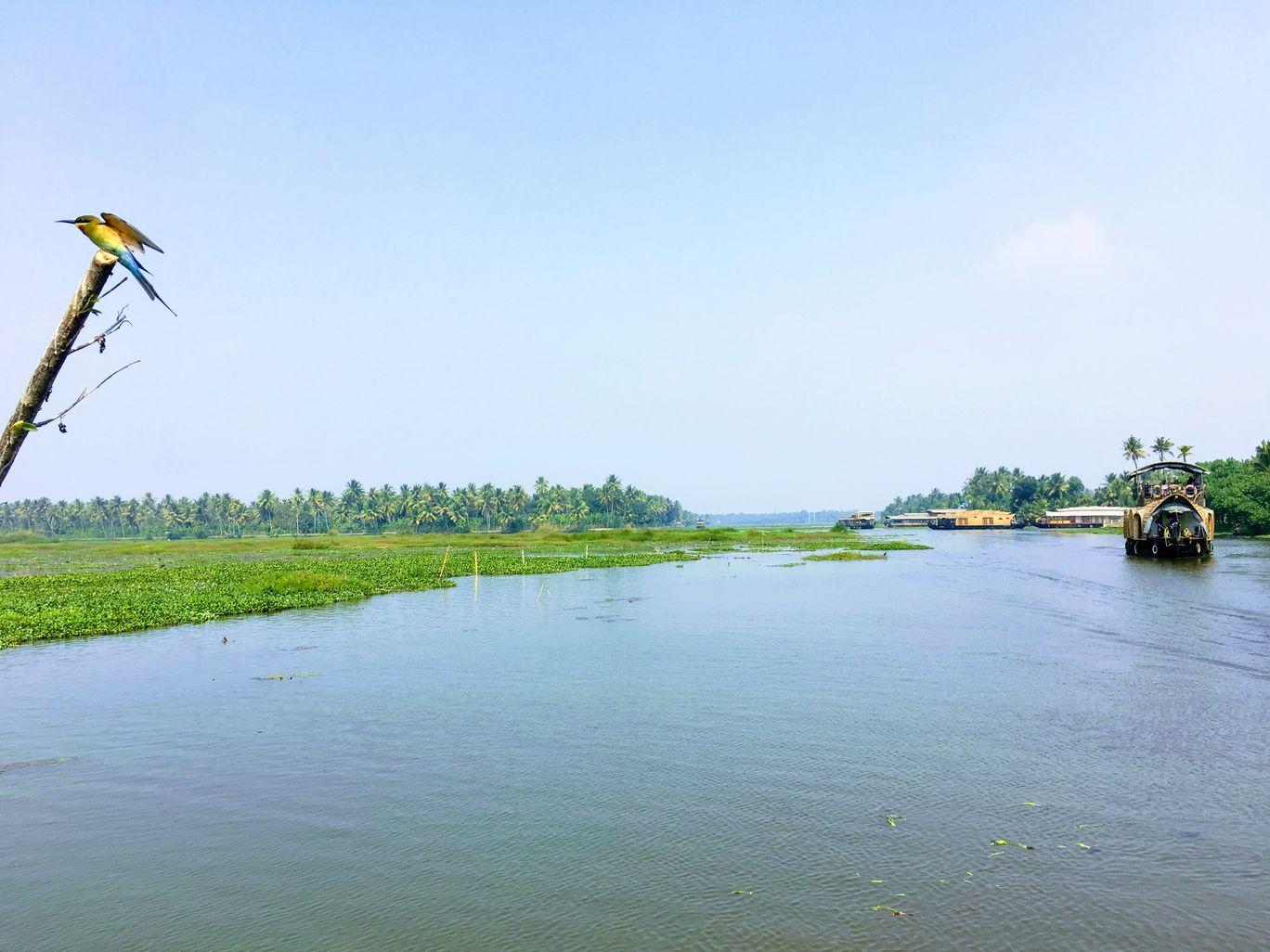 Photo of Kumarakom By saigopika23