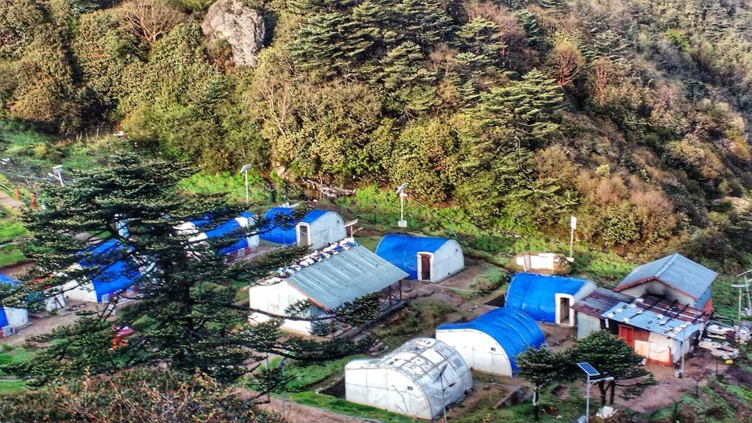 Photo of Sandakphu By Adib Shaikh