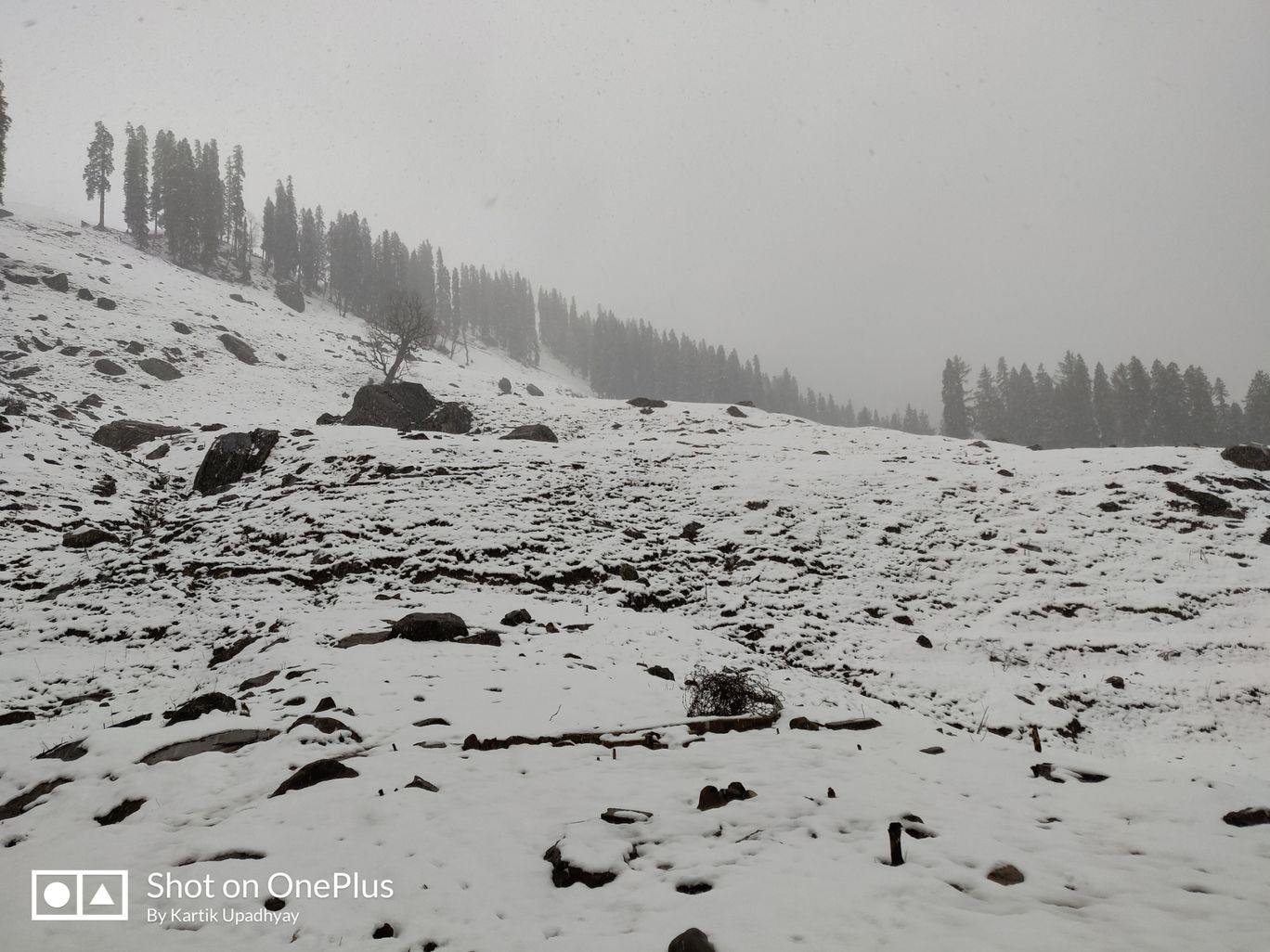 Photo of Manali - Witnessing the first snowfall By Kartik Upadhyay