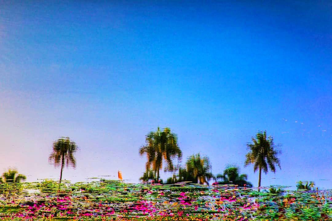 Photo of Kerala By Meenakshi Jain