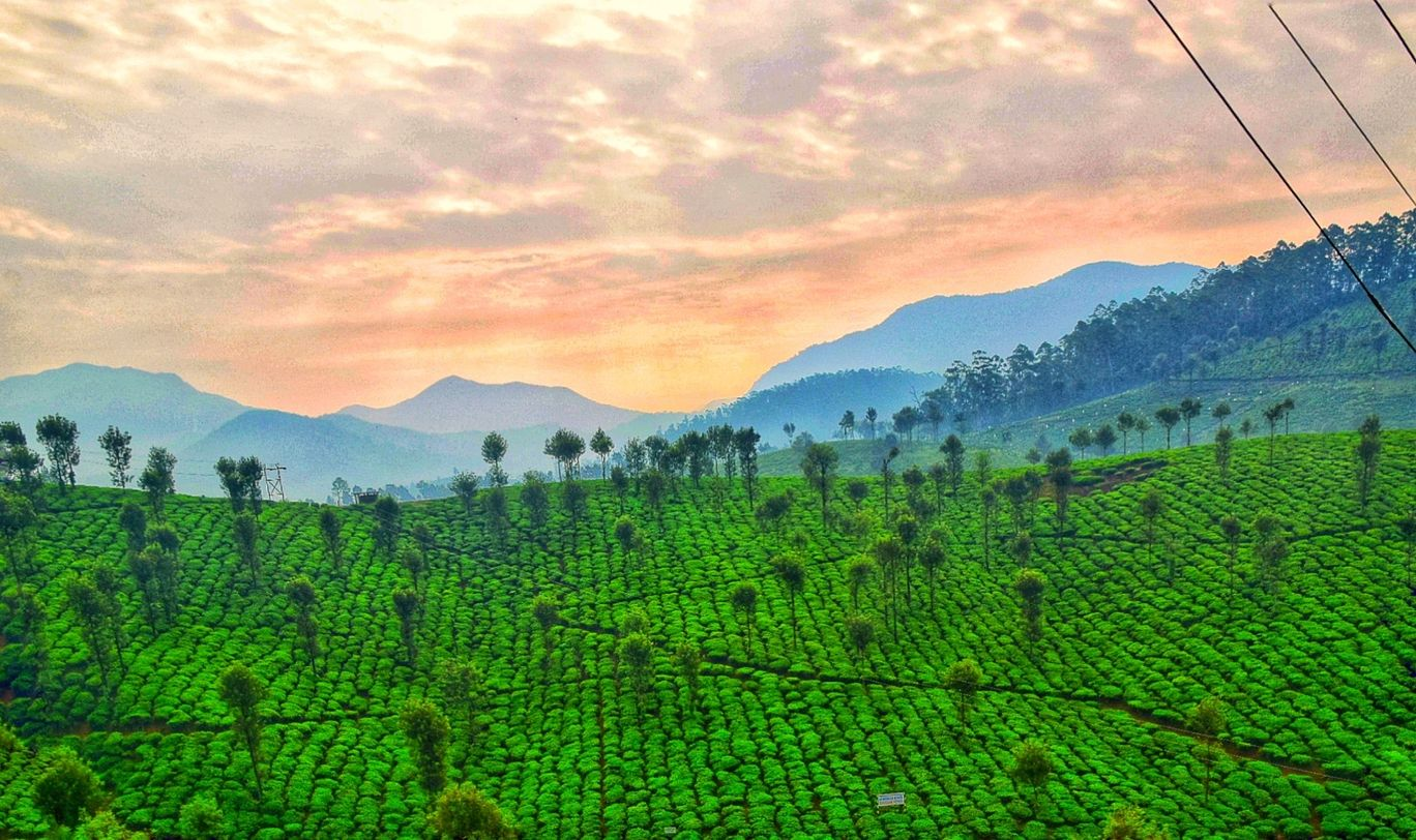 Photo of Valparai By Praveen v