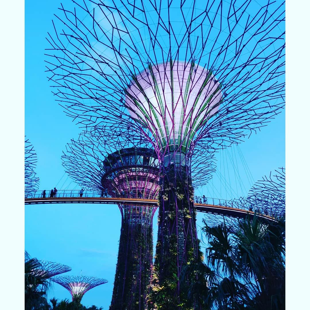 Photo of Singapore By Sharvari Raut