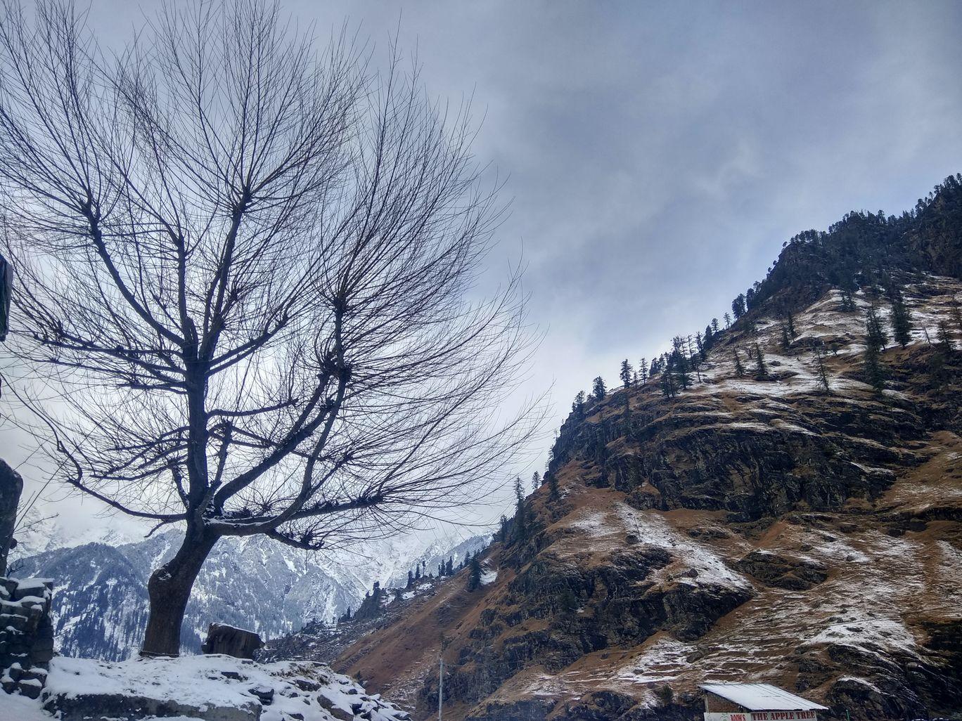 Photo of Kothi By Priyansh Banthia