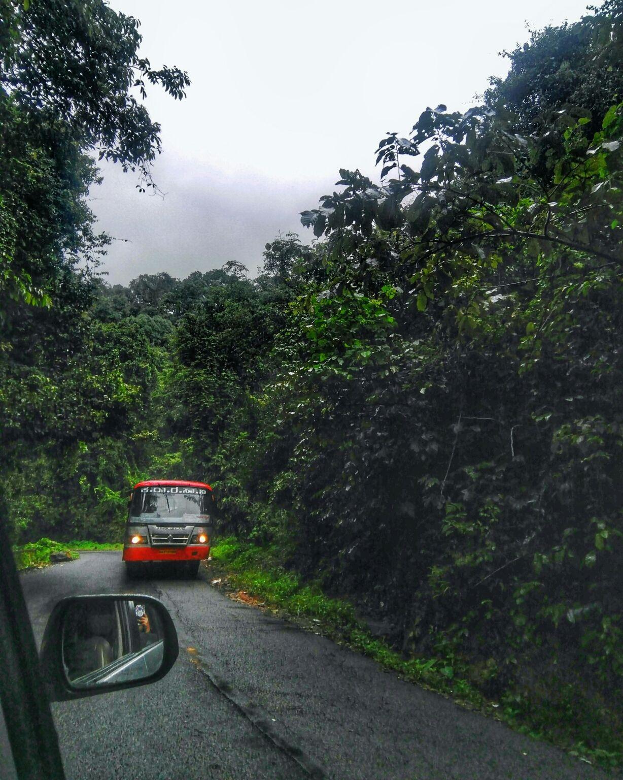 Photo of Kodachadri Hills Way By Pavee Balan