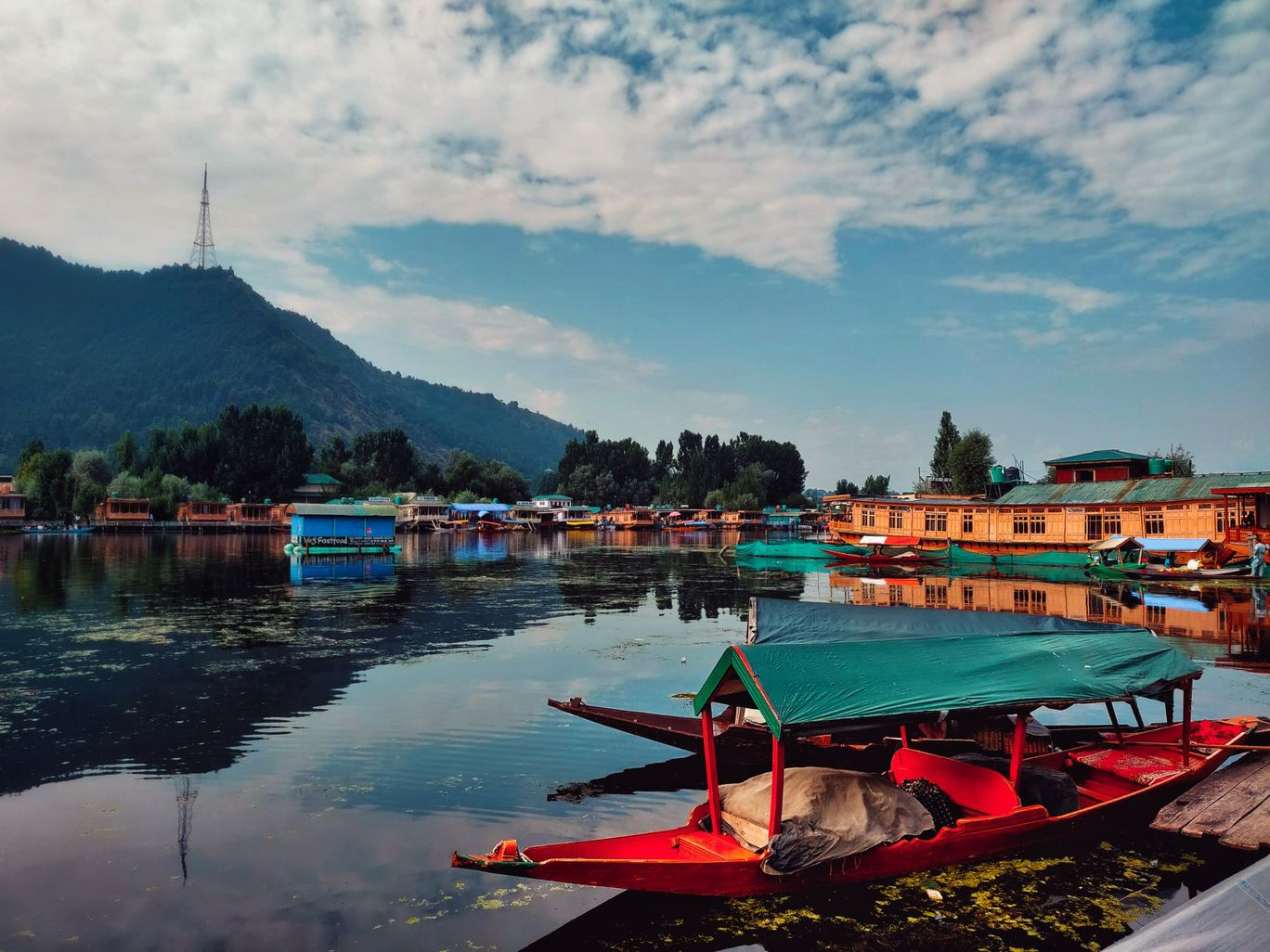 Photo of Dal Lake By Rohan Gogia