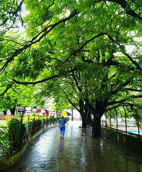 Photo of Nainital By Shivani Marshal