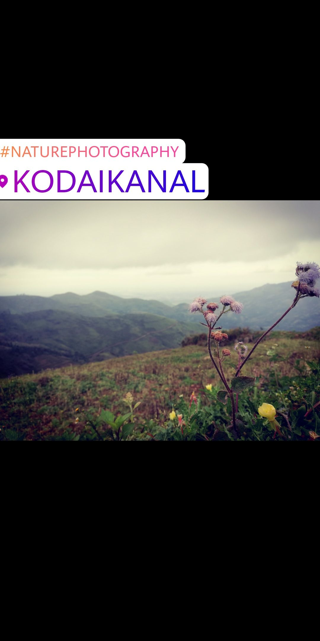 Photo of Kodaikanal By M S Junaid