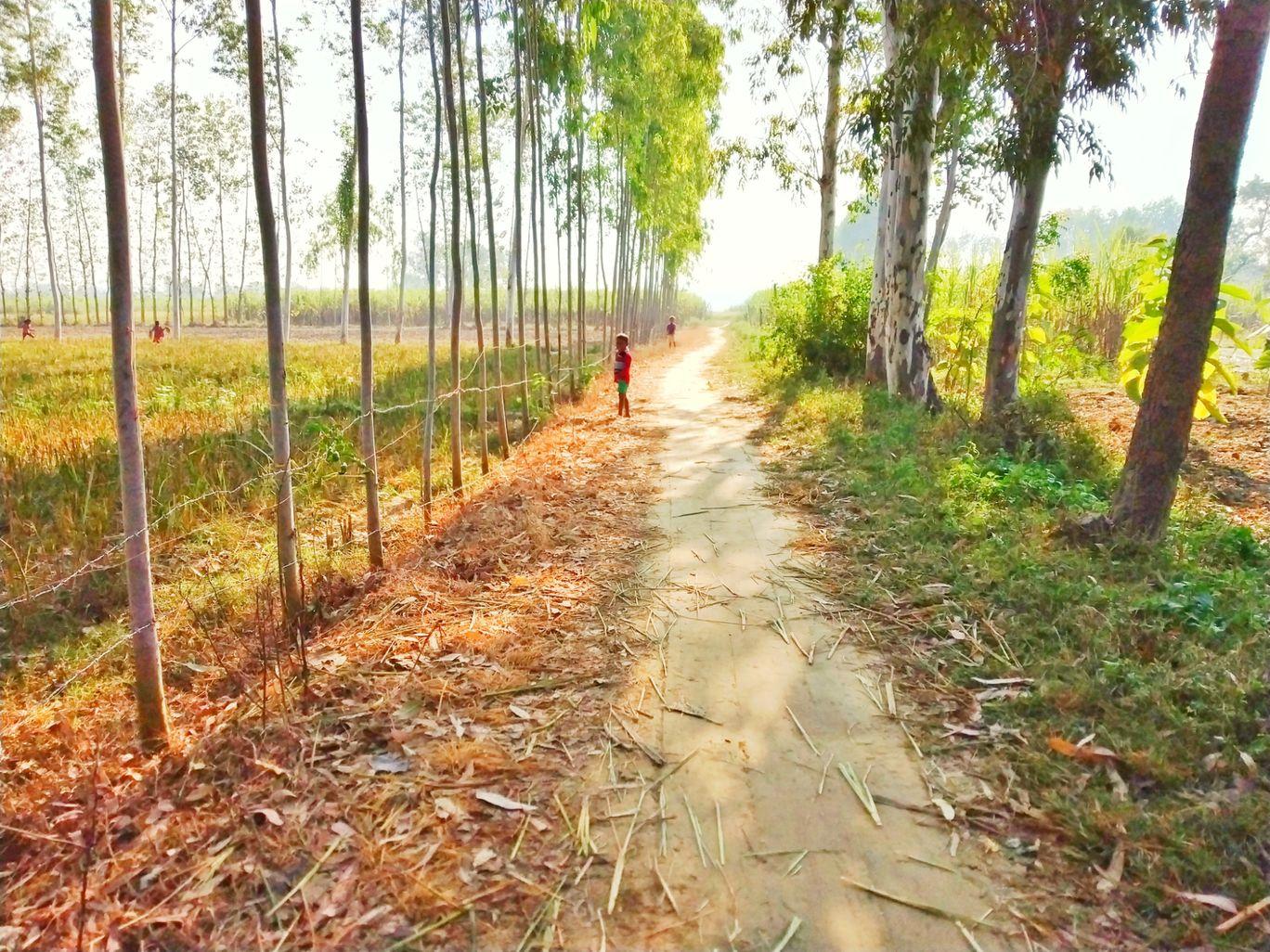 Photo of Lakhimpur By Ashutosh verma