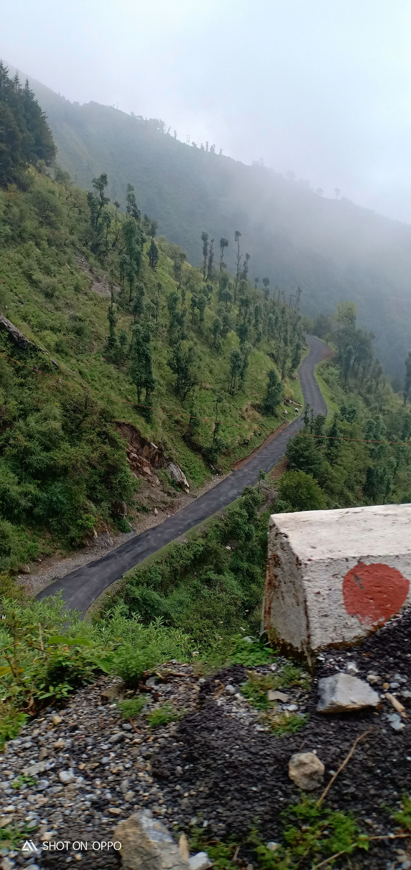 Photo of Dhanaulti By Kavita Aggarwal