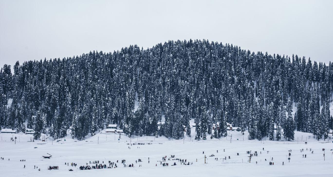 Photo of Srinagar By Manish Dev Singh