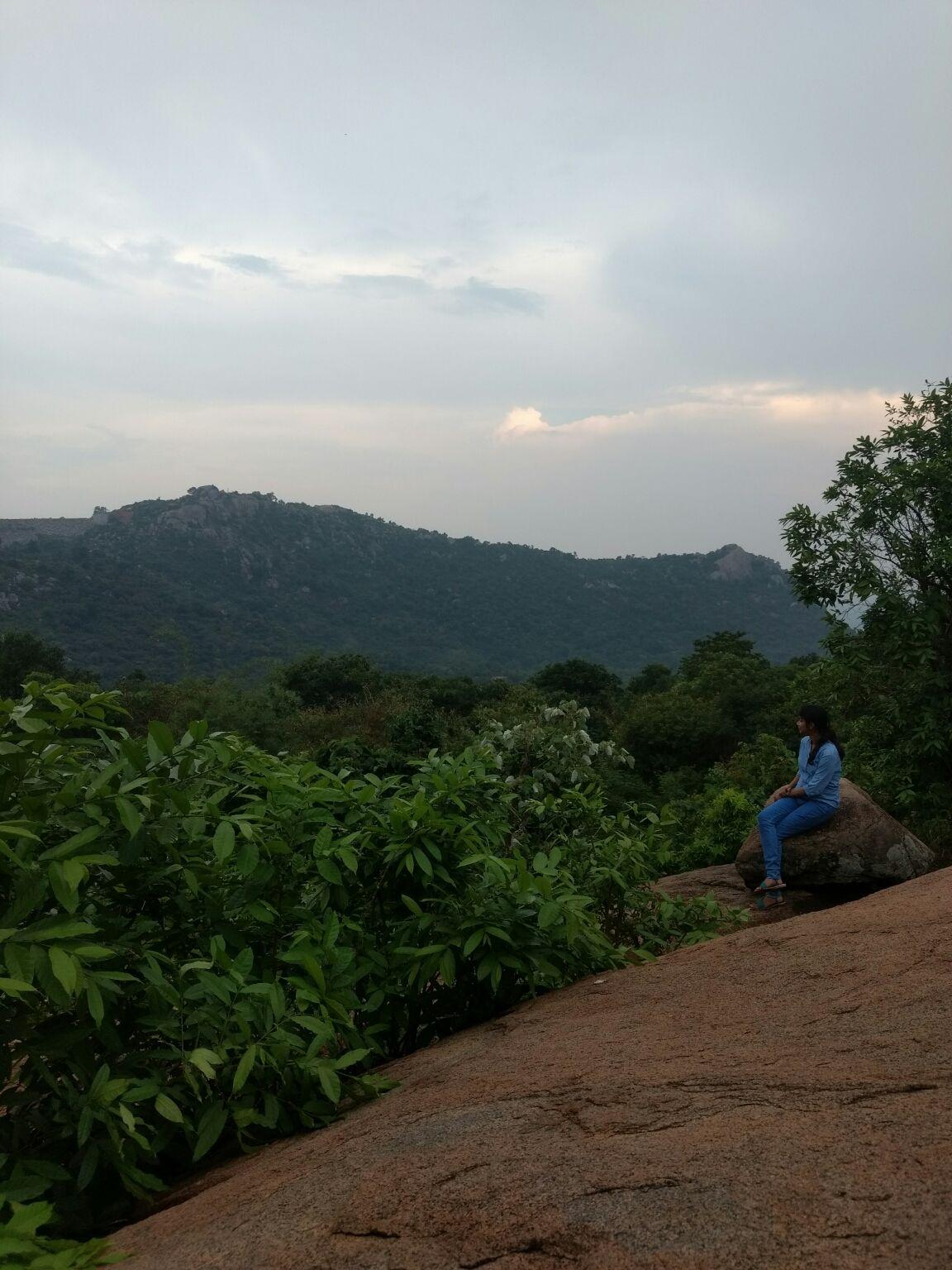 Photo of Yelagiri Hills By Pothkutty 🐃