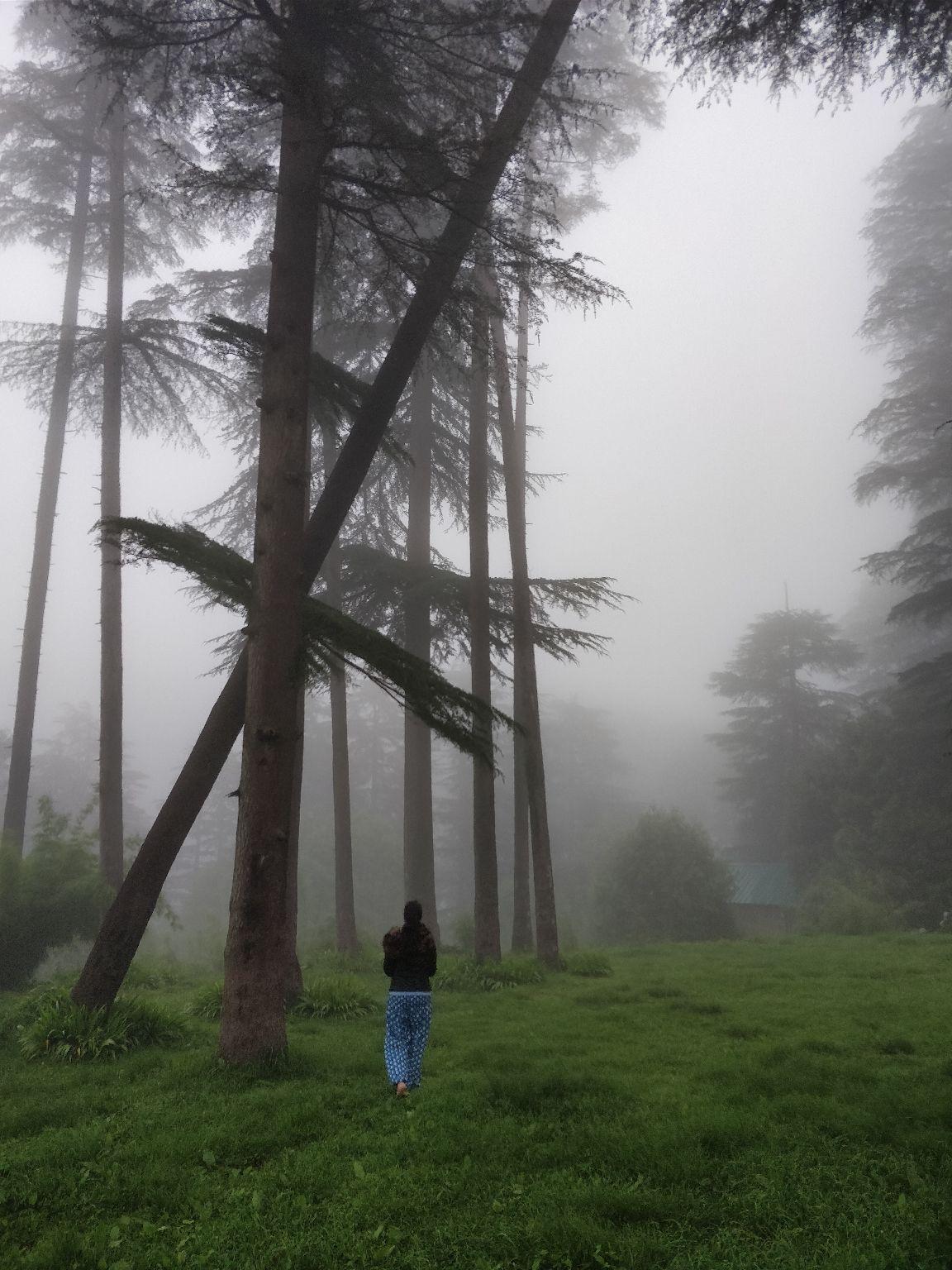 Photo of Mussoorie By Shruti Dangwal