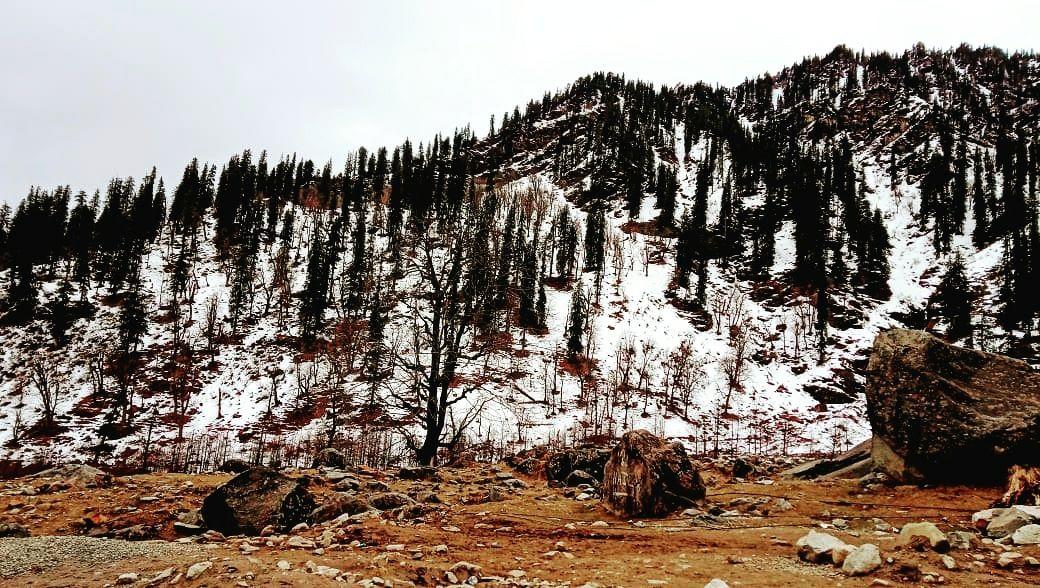 Photo of Himachal Pradesh By Agrima Agnihotri