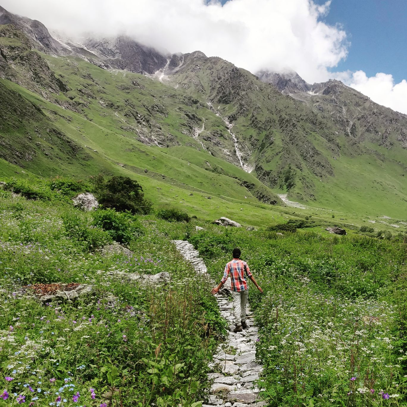 Photo of Valley of Flowers National Park By Gurdeep Singh