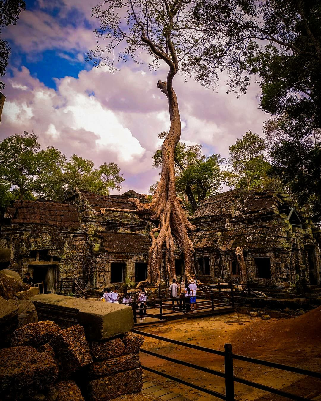 Photo of Ta Prohm Temple By The Paryatak