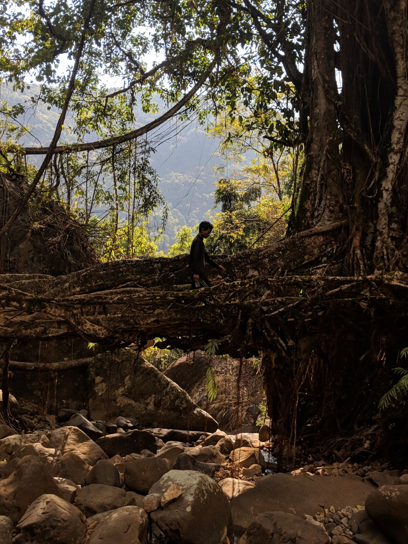 Photo of Meghalaya By Vidisha