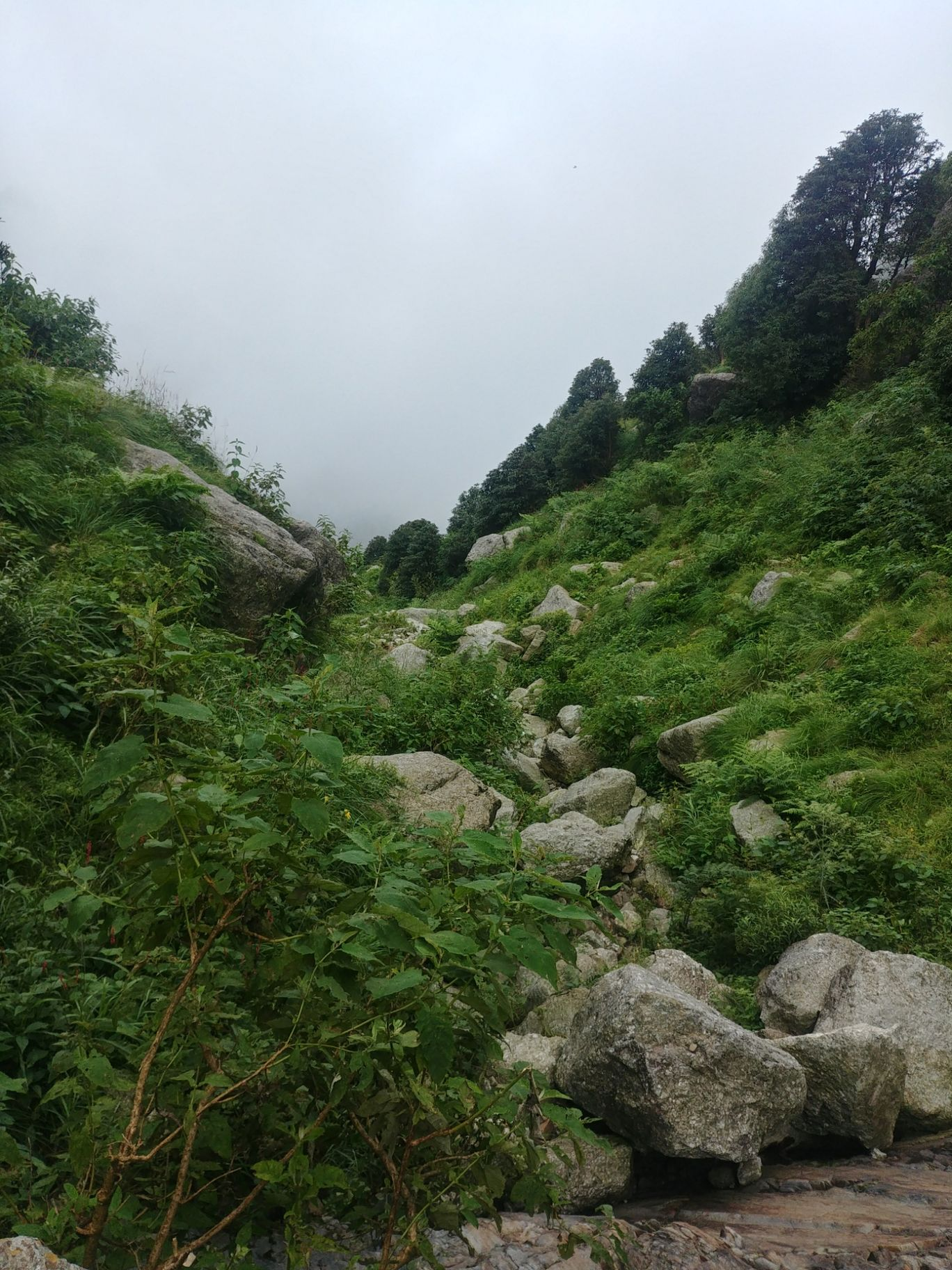 Photo of Triund Hill Trail from Bhagsunag Waterfall By Manav Dhull