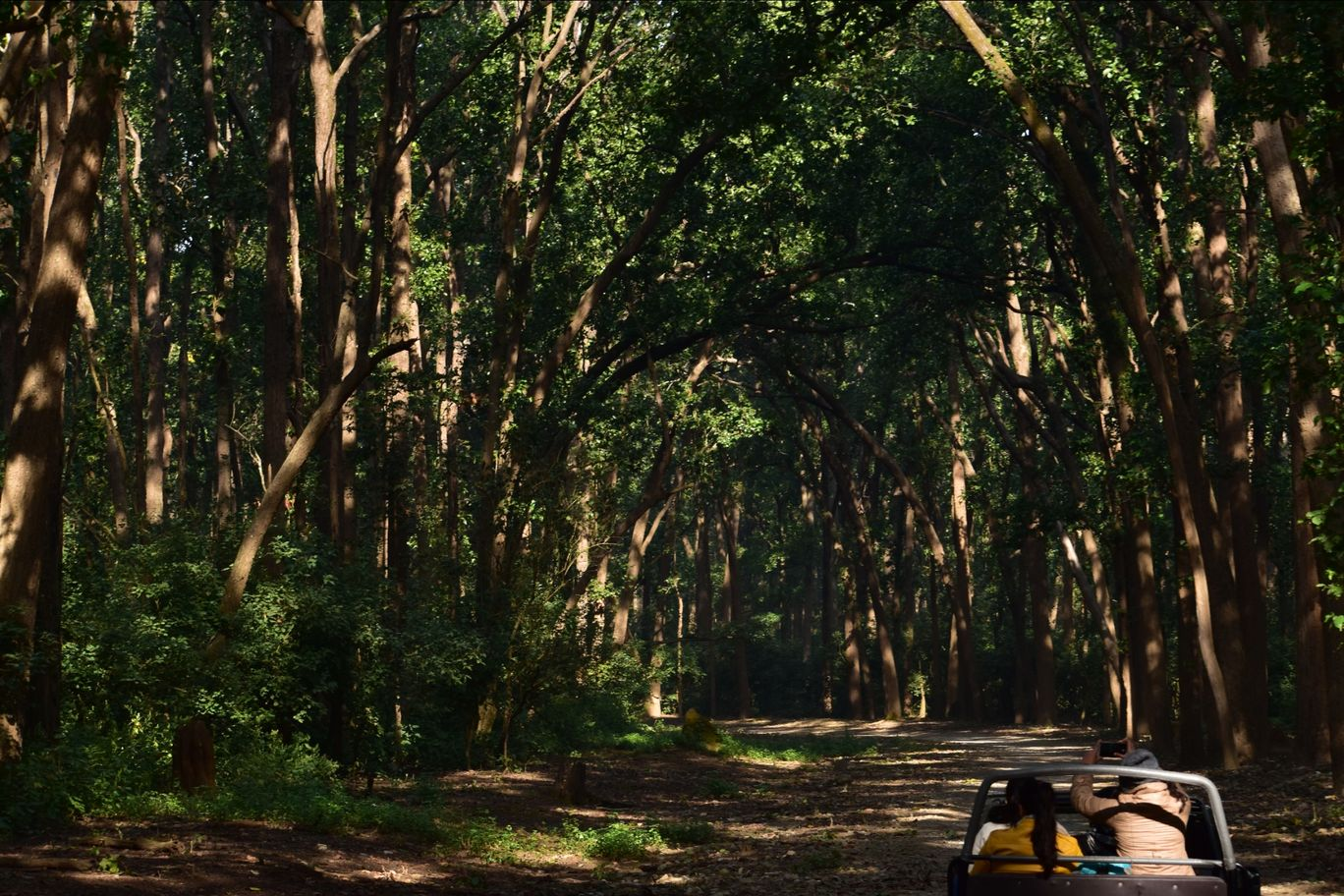 Photo of Jim Corbett National Park By khalid
