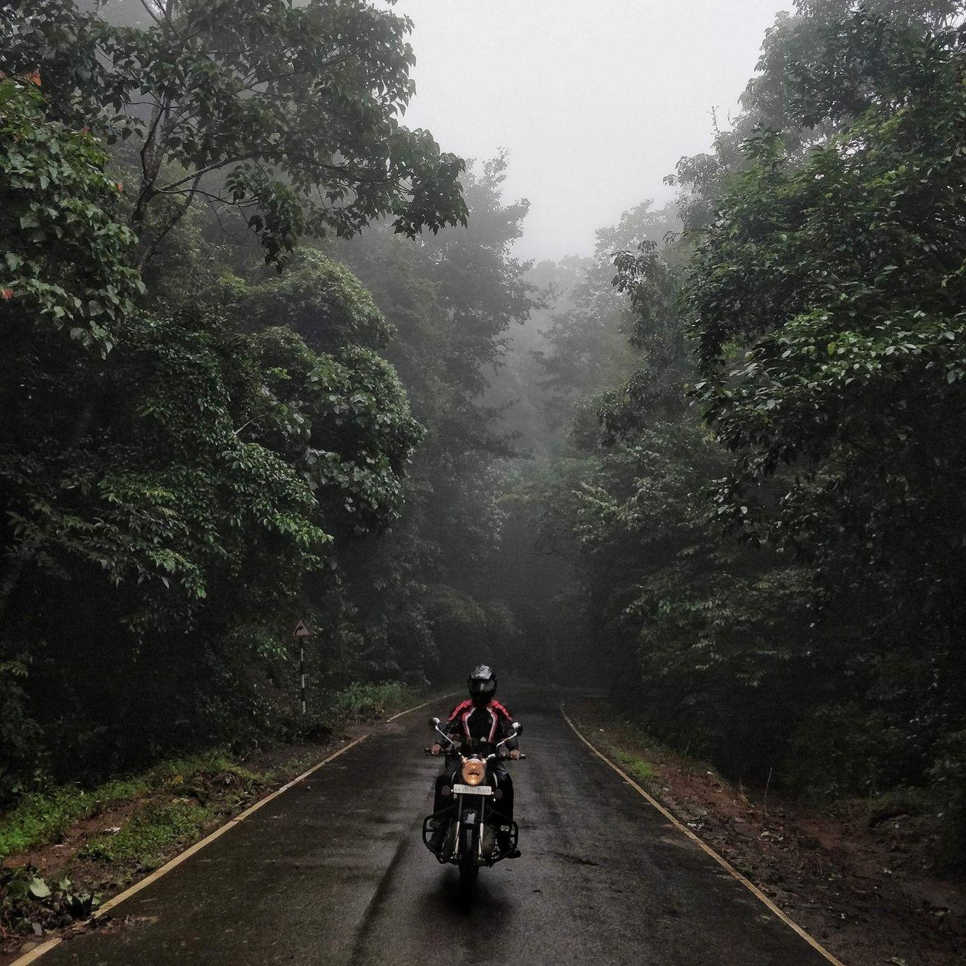 Photo of Brahmagiri Wildlife Sanctuary By Savin Gurkar