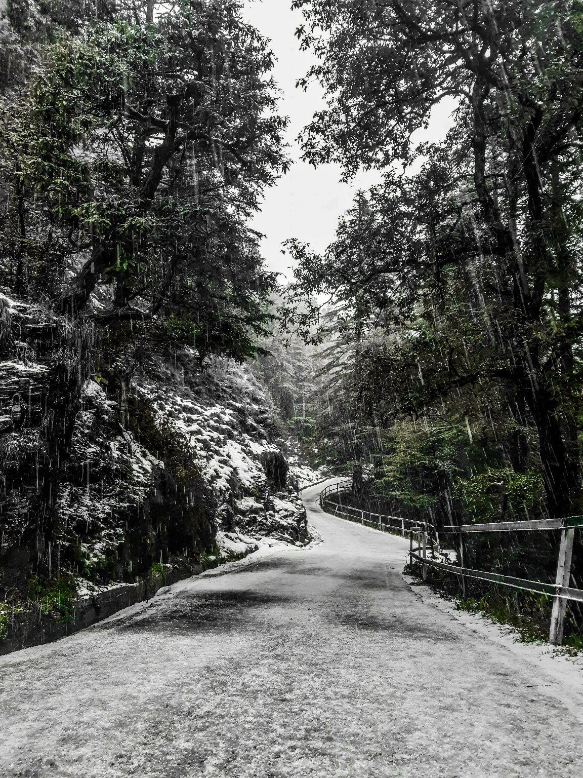 Photo of Shimla By Shubhee
