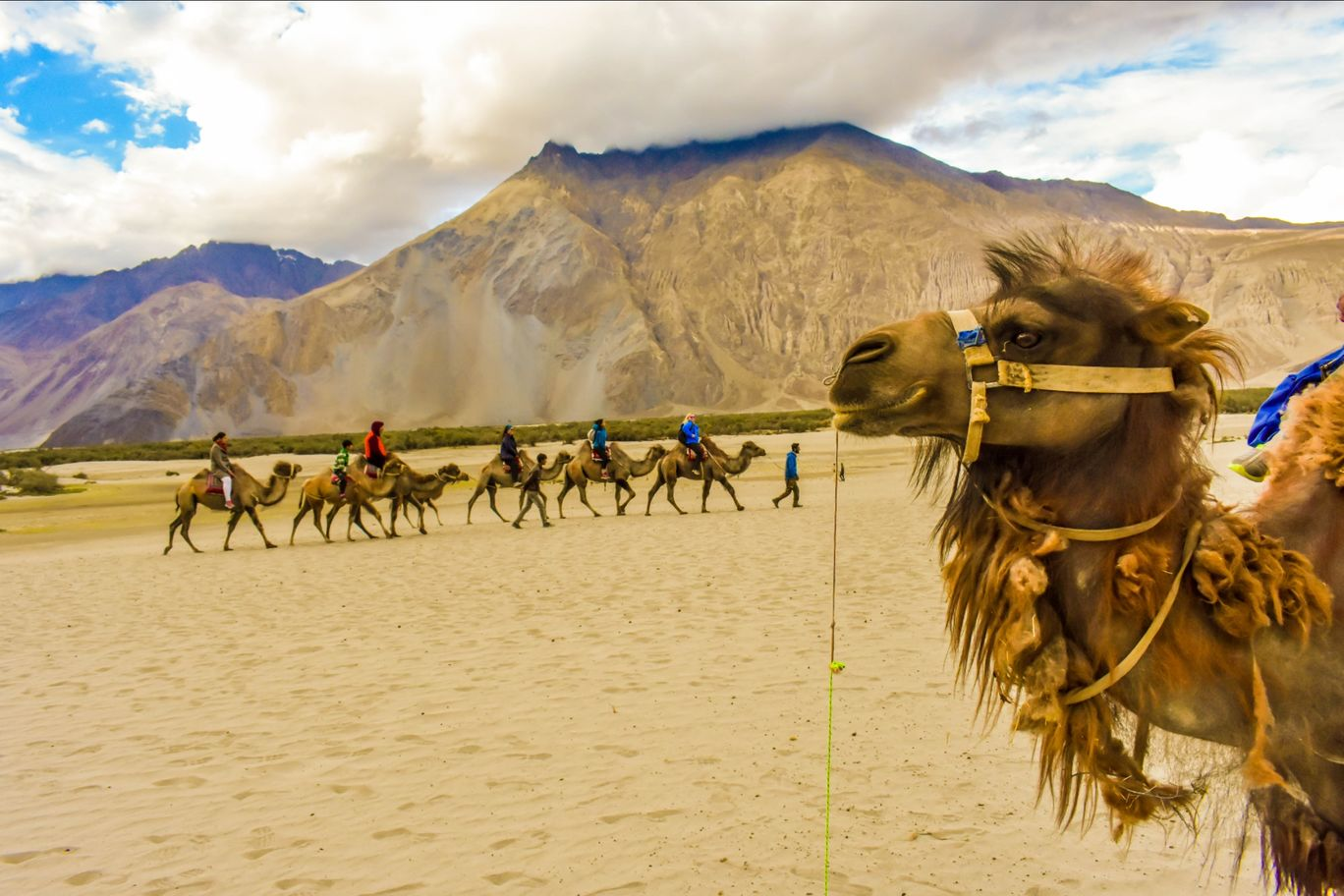 Photo of Nubra Valley By Mayank Jain