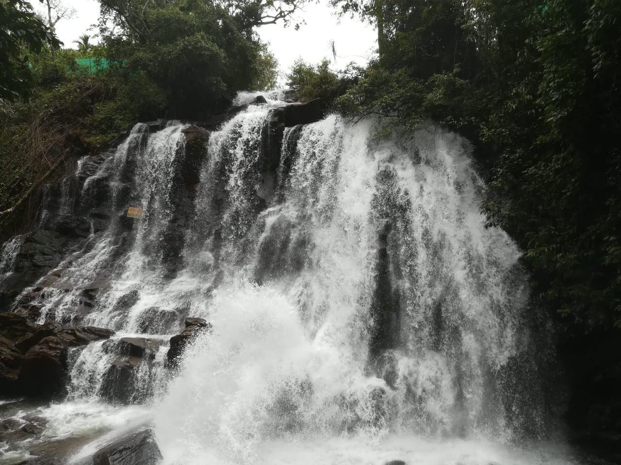 Photo of Agumbe By Sachin Ramachandran