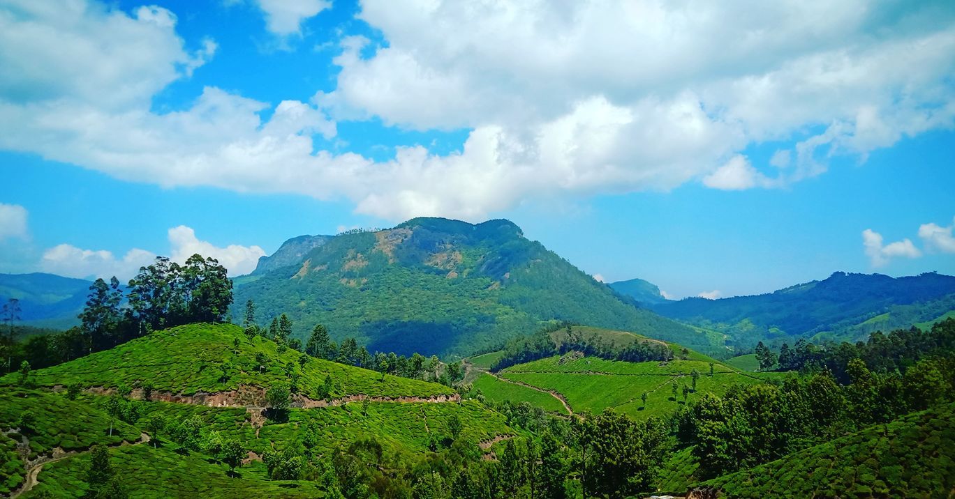 Photo of Munnar By Sachin Ramachandran