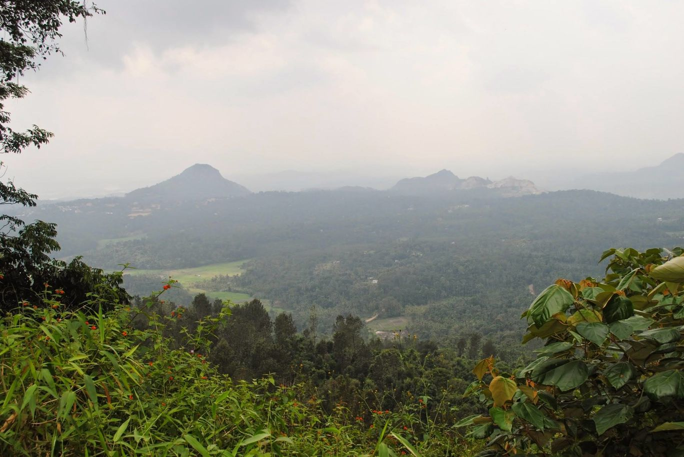 Photo of Wayanad bliss By Akhil Bhat