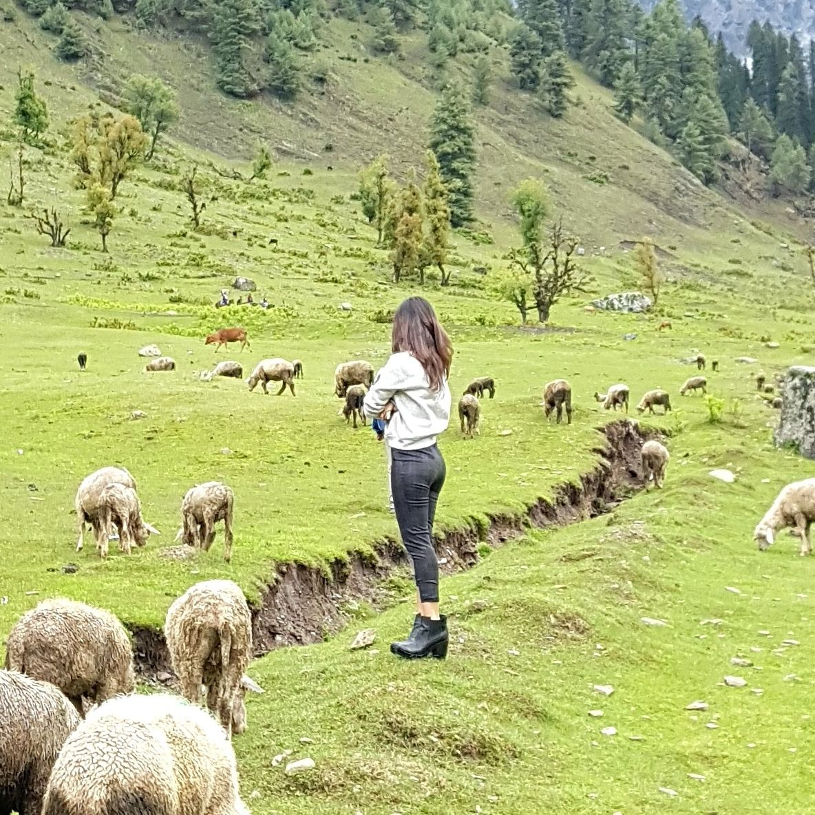 Photo of Jammu and Kashmir By Neha Lall