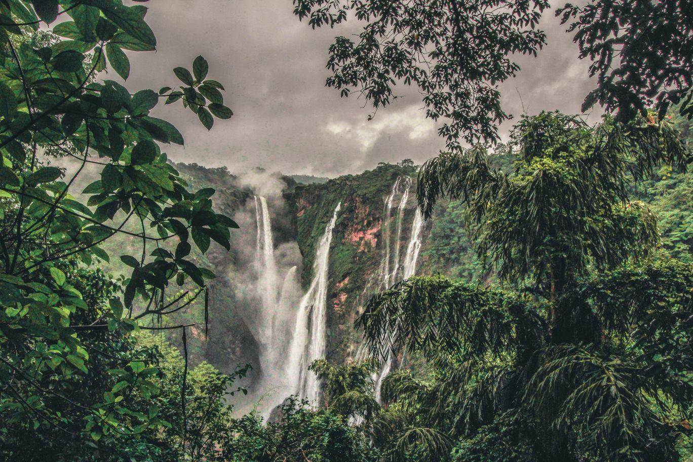 Photo of Jog Falls By Ankan Debnath