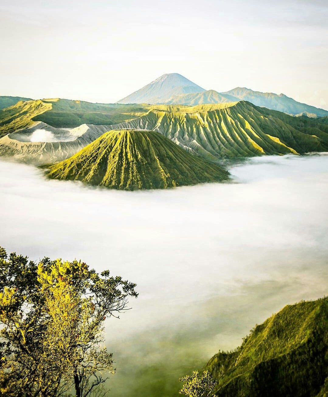 Photo of Mount Bromo By Rachael Pereira
