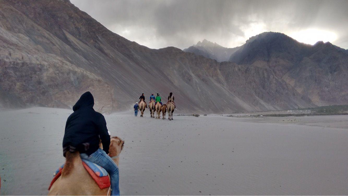 Photo of Nubra Valley By Priya Gadepalle .