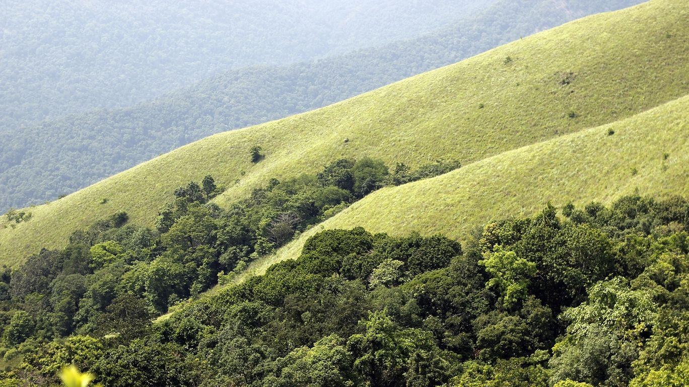 Photo of Kumaraparvatha Hiking Trail By Subithraj N K