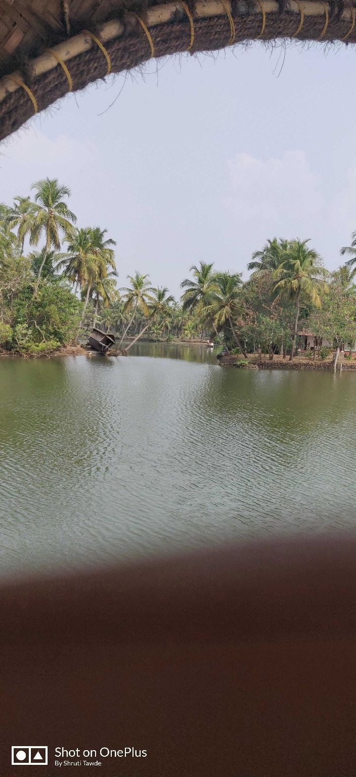 Photo of Kerala By Shruti Tawde