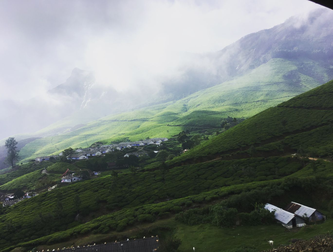 Photo of Munnar By Fathima Burhana