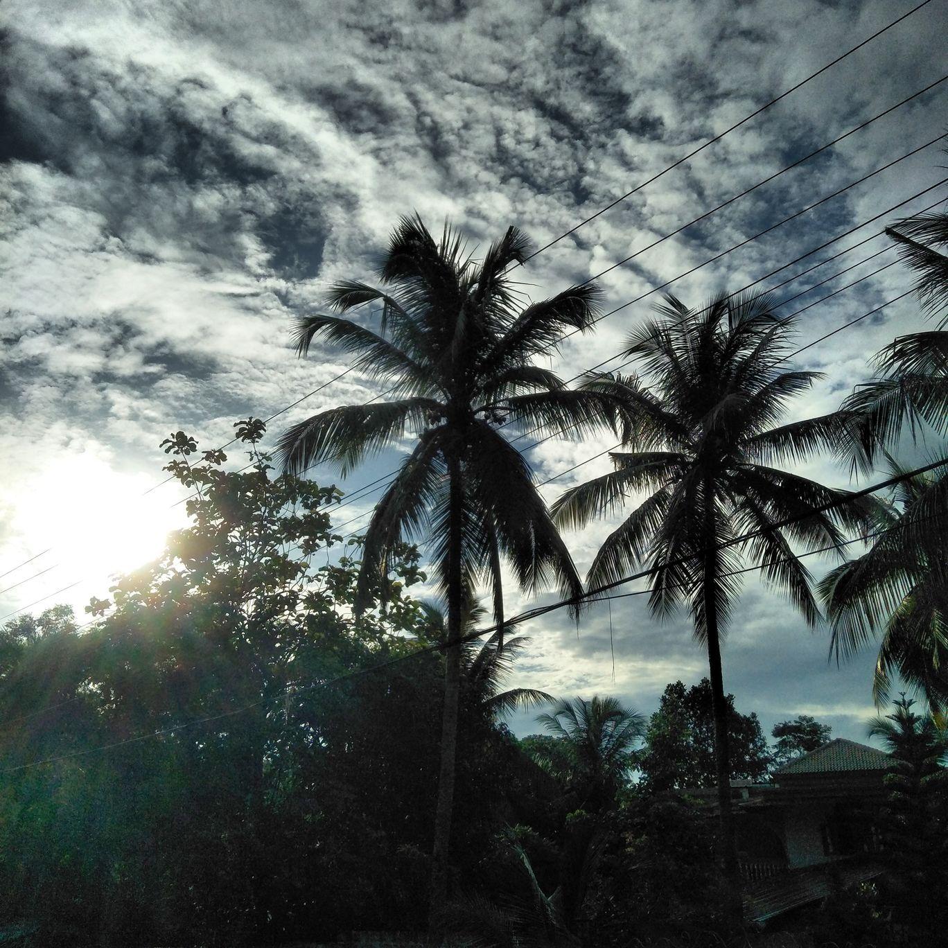 Photo of Kerala By Pournami pottekat