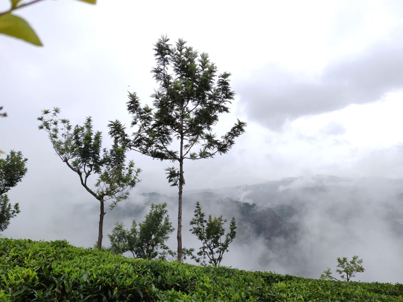 Photo of Ooty By Kulish