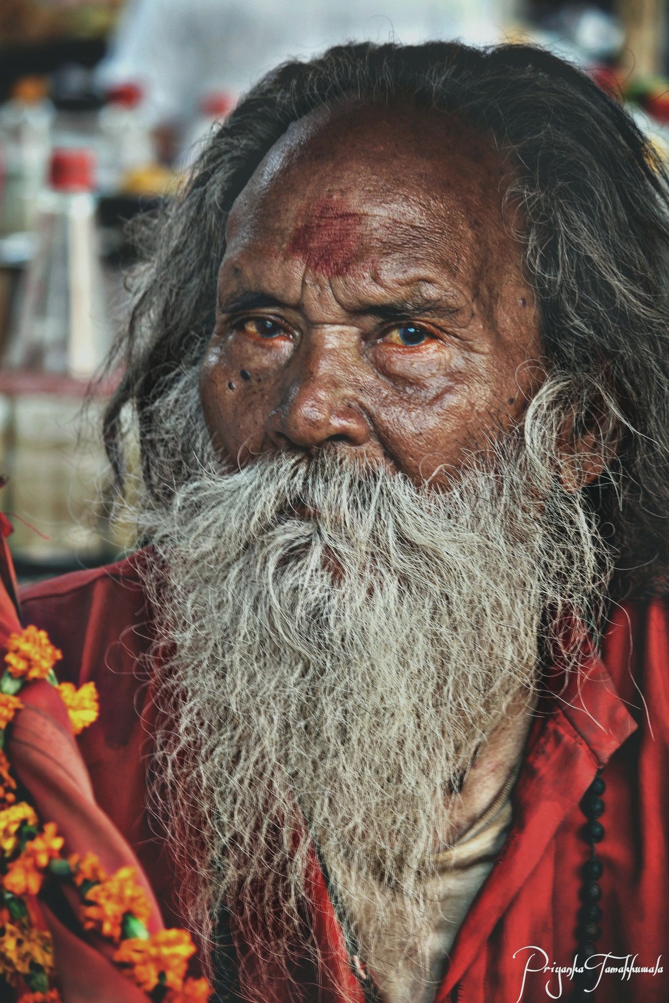 Photo of Rajasthan By priyanka tamakhuwala