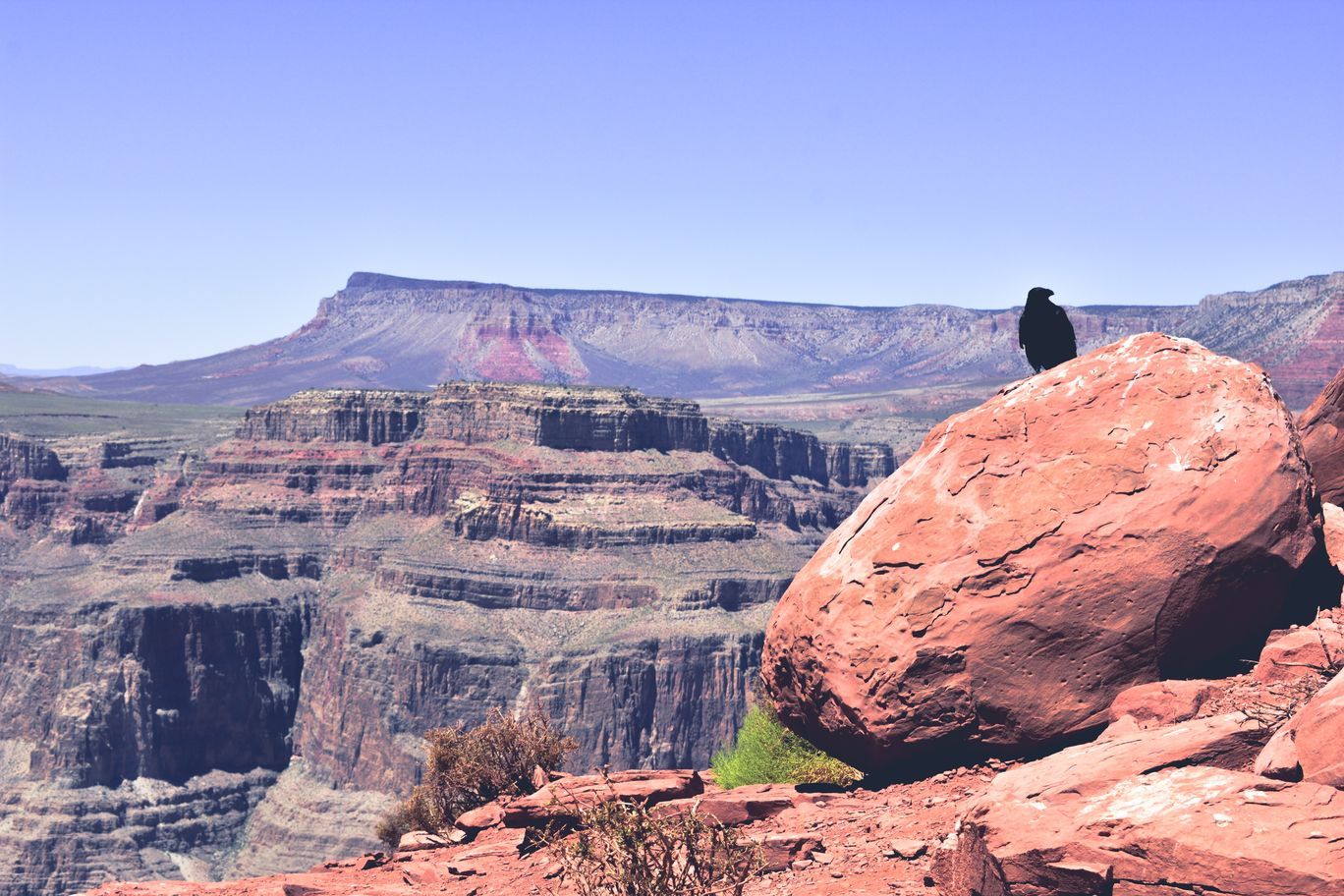 Photo of Grand Canyon By Chintan Patel