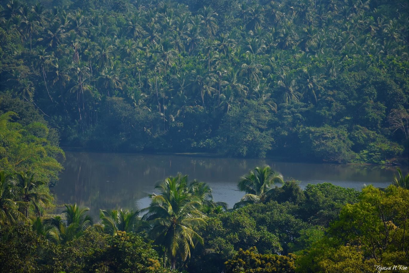 Photo of Kerala By Tejaswi N Rao