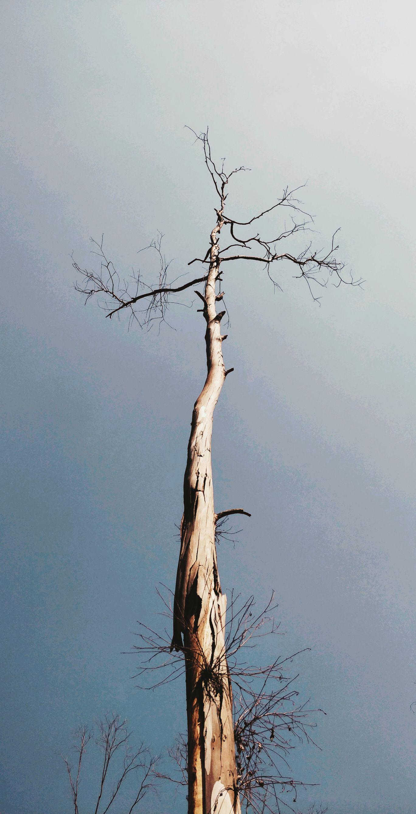 Photo of Hubli By Deepti Tambrallimath