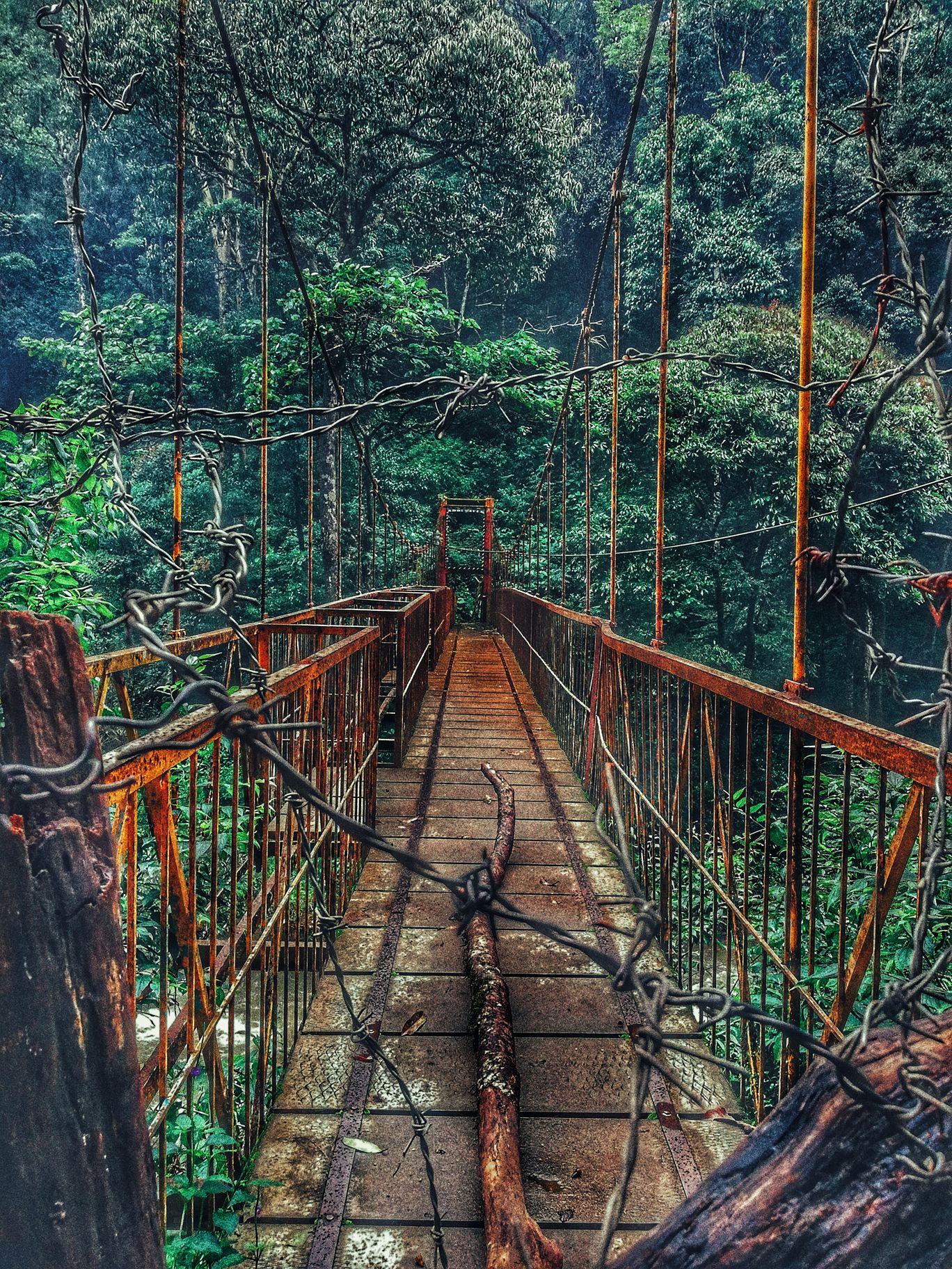 Photo of Abbey Falls Madkeri By NyxMo